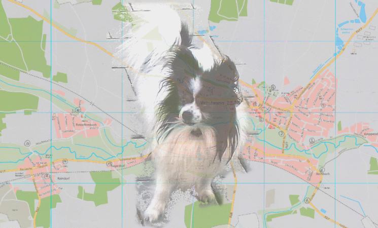 Hundetoiletten im Gemeindegebiet Veitsbronn