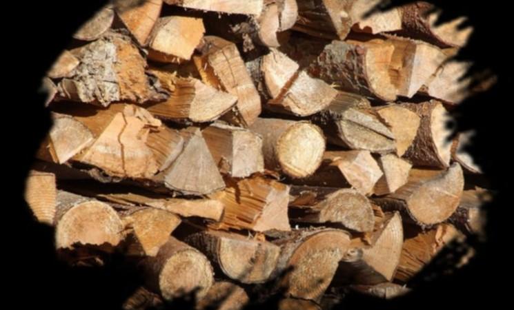 Holzverkauf Gemeinde Veitsbronn